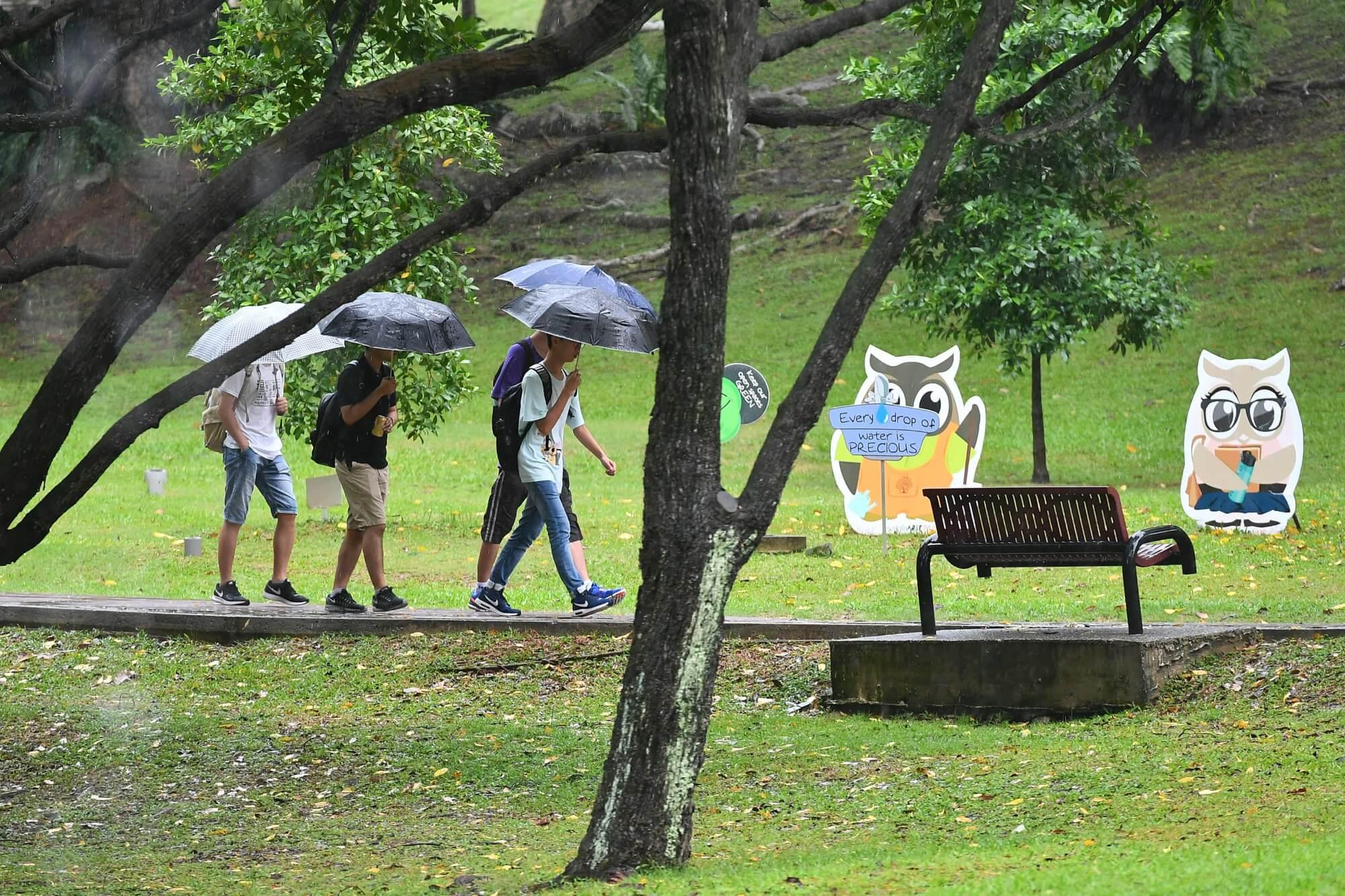 people carrying umbrella in rain
