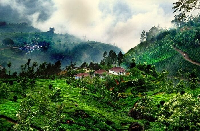 Bangalore To Coorg Travel Packages