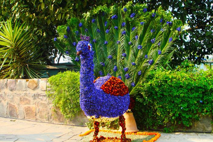 flower festival delhi
