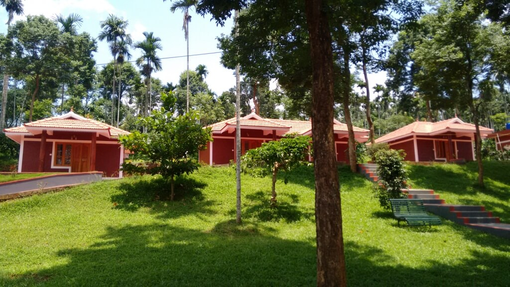 A view of lush greenery around Pappy Nest Holiday Resort in Wayanad
