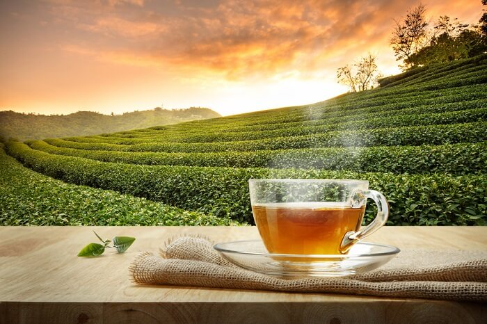 enjoy the best time with tea