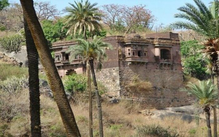 Achalgarh fort surrounded with palm trees