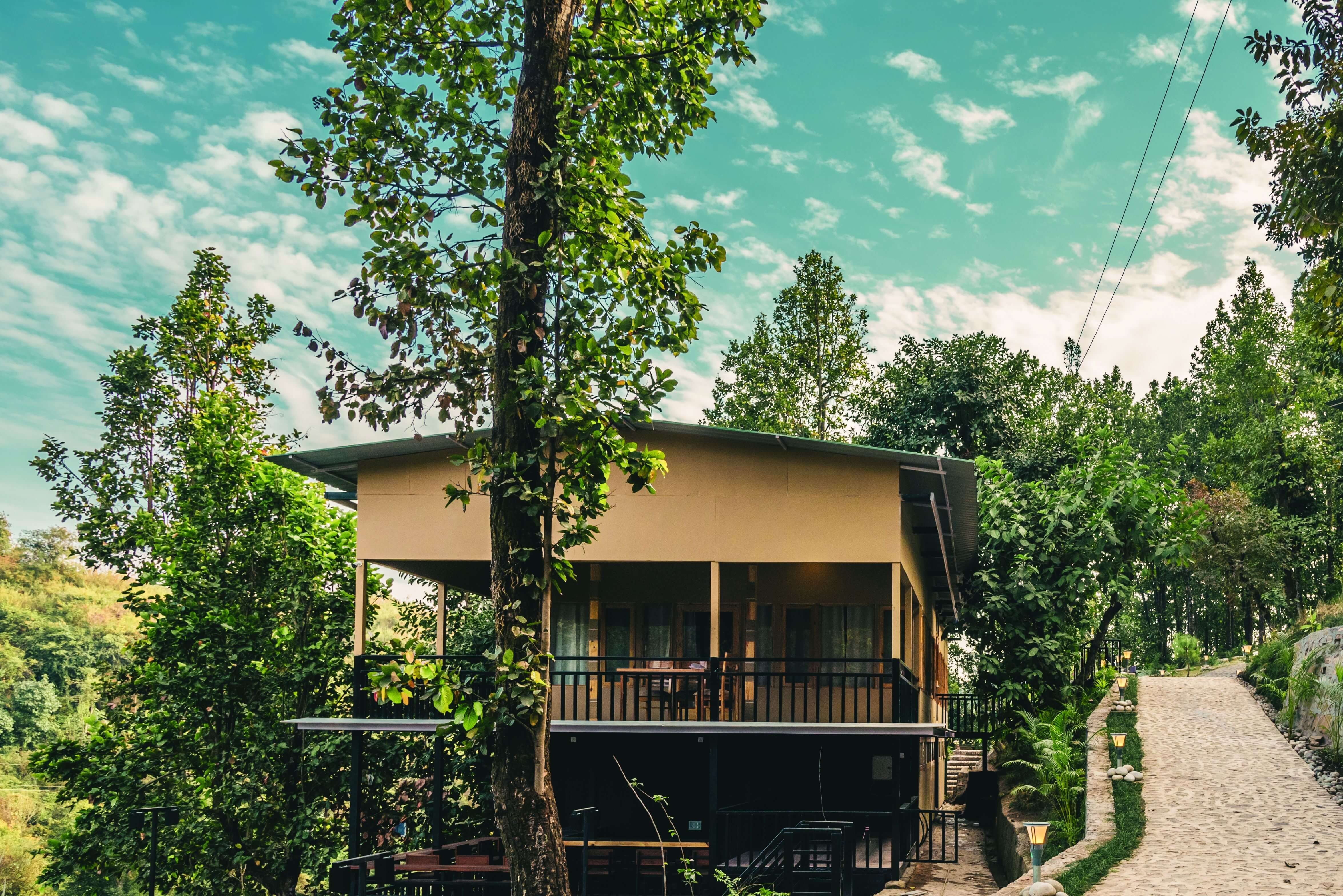 Salwood resort surrounded by Sal trees