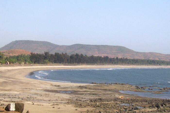 Kondivali_beach