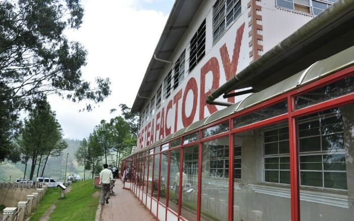 Tea Factory and museum in Ooty