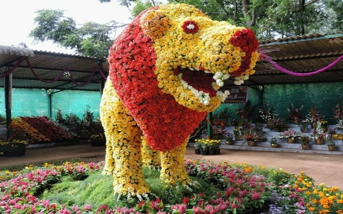 a lion made of flowers in Yercaud