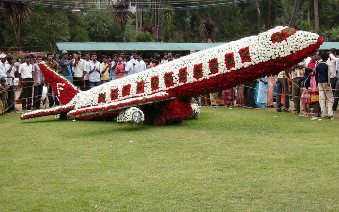 a plane decorated with flowers on Ooty Flower Festival