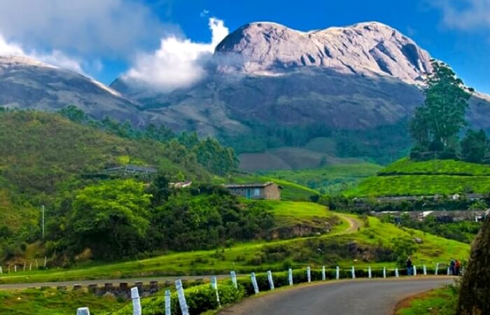 A view of mountains and lush greenery in Nelliyampathy near Munnar