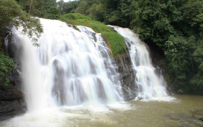 abbi falls view