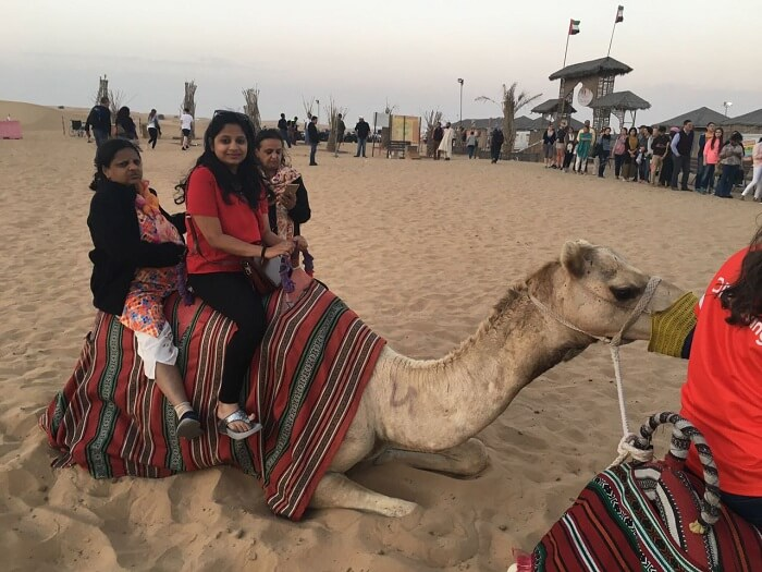 dubai camel ride