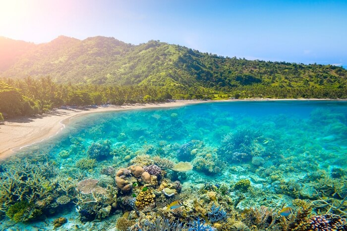 The coral reefs and the tropical coast of Lombok island