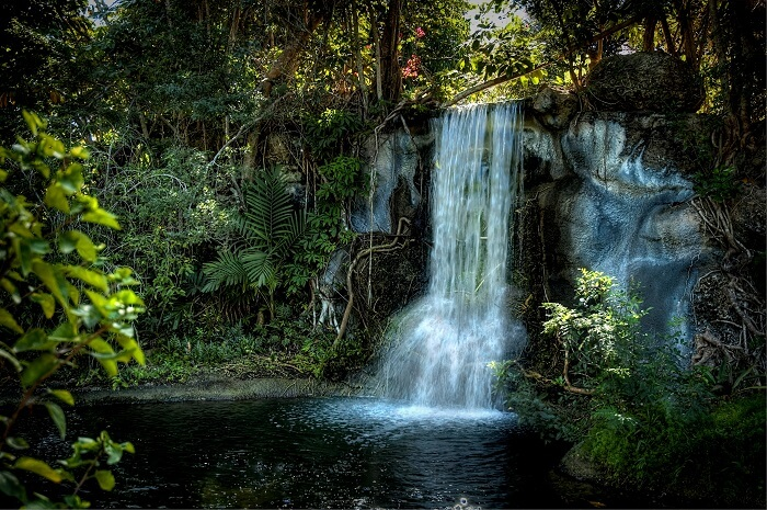 romantic garden in Grand Bahama Island
