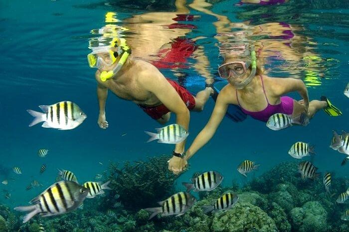 Snorkeling in Grand Bahama Island