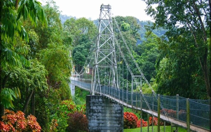 A bridge in the Royal Botanical Garden in Kandy