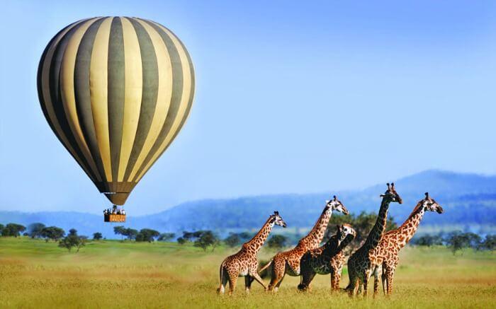 Balloon safari in Africa