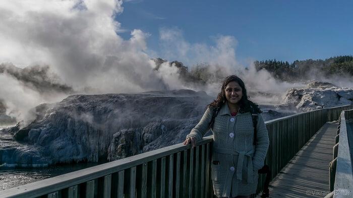 Rotorua natural geyser