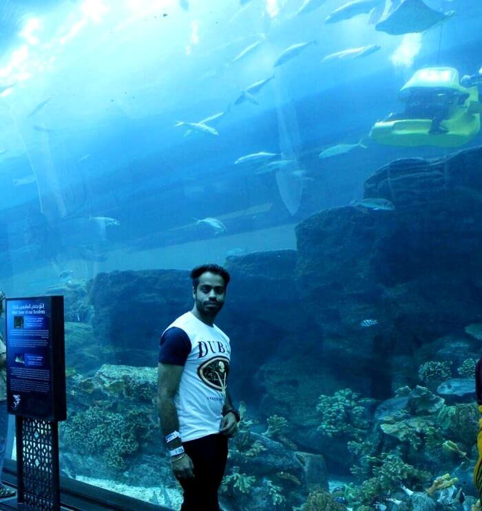 Underwater aquarium dubai