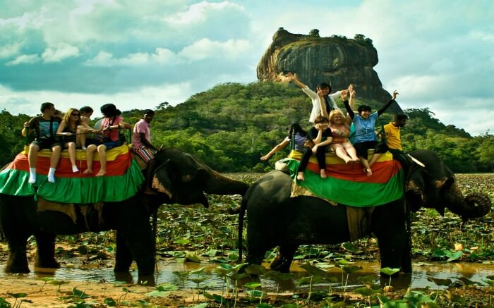 Ecstatic tourists taking joyride on elephants in Kandy