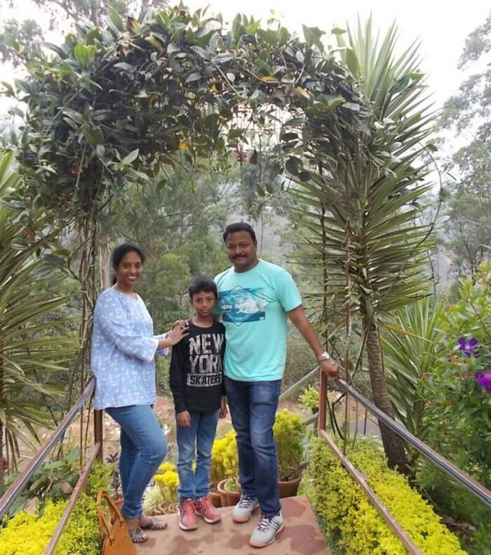 tea gardens of munnar