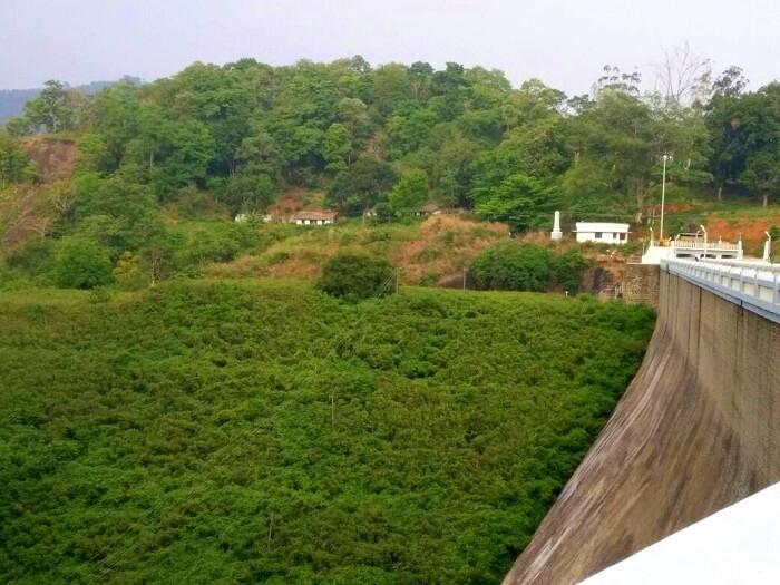 greenery in kerala