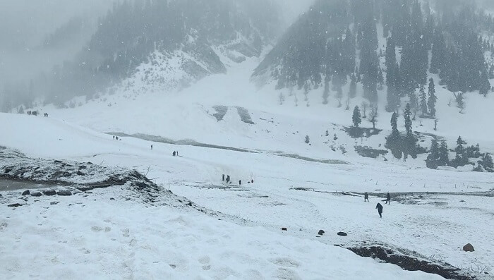 heavy snow in sonmarg