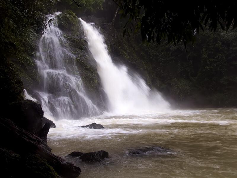 Jogi Gundi falls in Agumbe