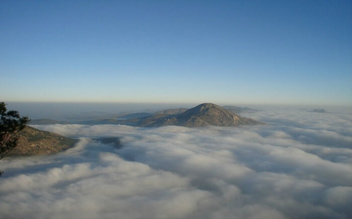 Nandi Hills submerged in clouds