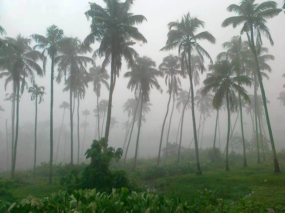 Rain in Kovalam