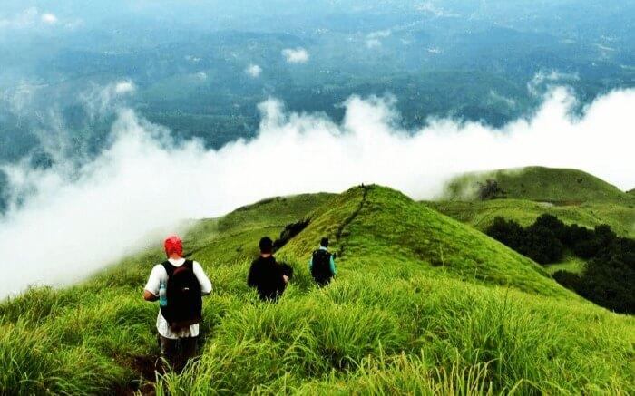 Trekkers walking across a hill near Wayanad