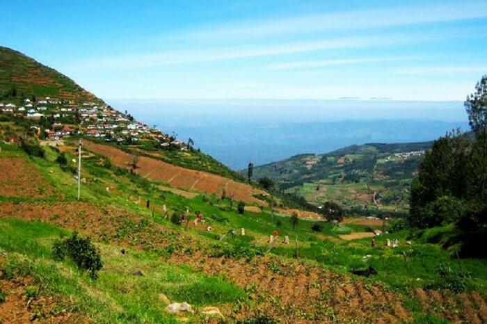 doddabetta-peak-nilgiri