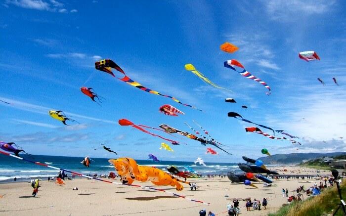 colourful kites in the sky during Makar Sankranti