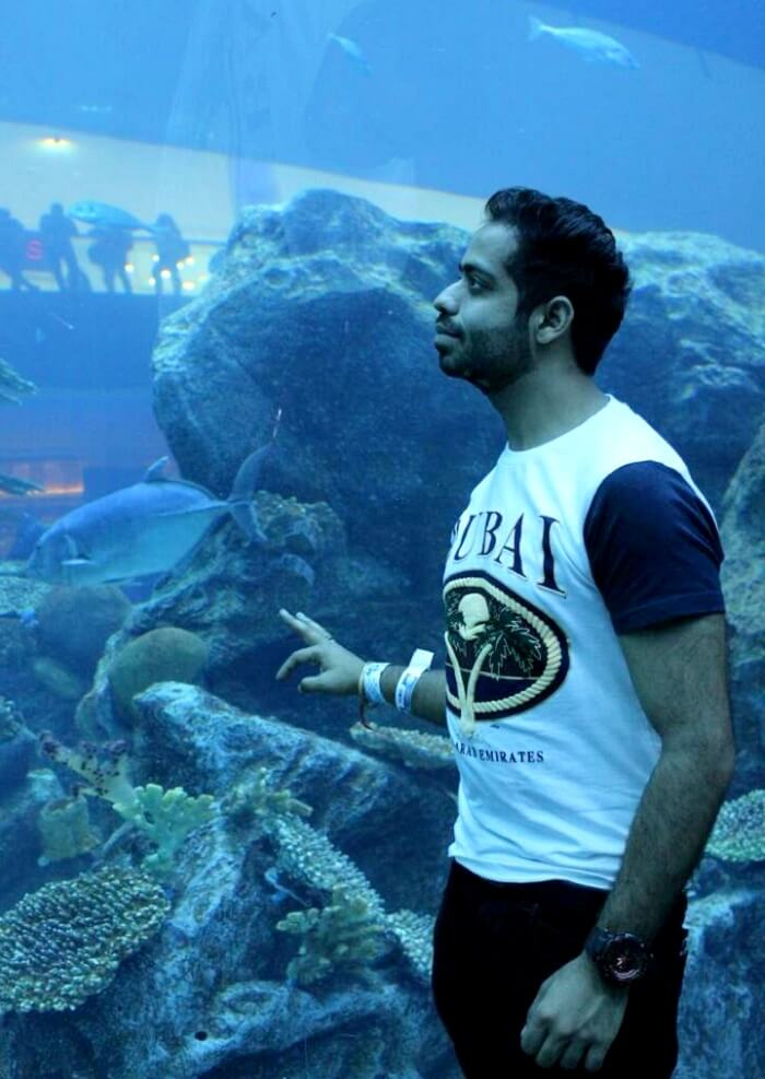 underwater aquarium in dubai