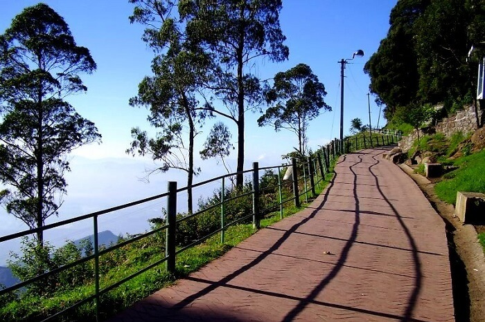 Coakers Walk Kodaikanal