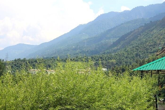 journey to manali