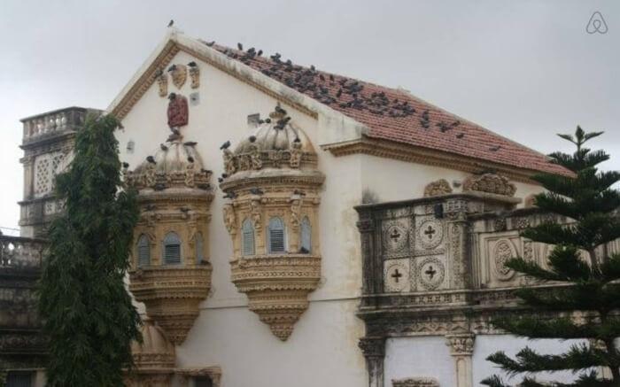Birds sitting on the roof of Devpur Homestay in Gujarat