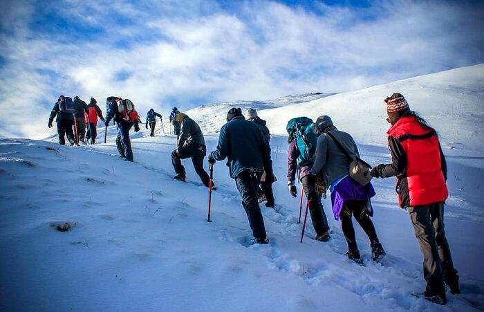 Kuari Pass Trek, India