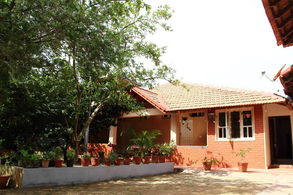 A Kannada style homestay with a tree and a porch