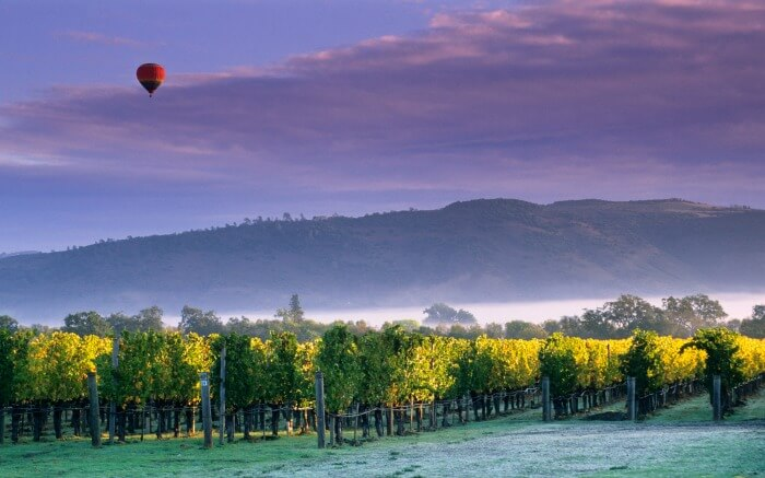 Hot air balloon flying over Napa Valley in California