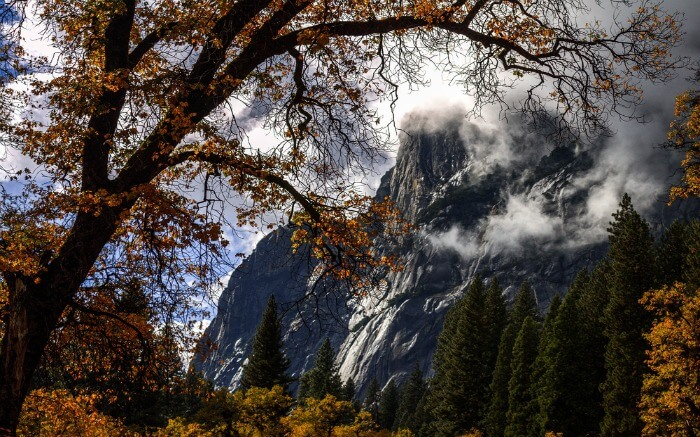Mountains of Yosemite National Park hidden behind trees and clouds in California in Autumn