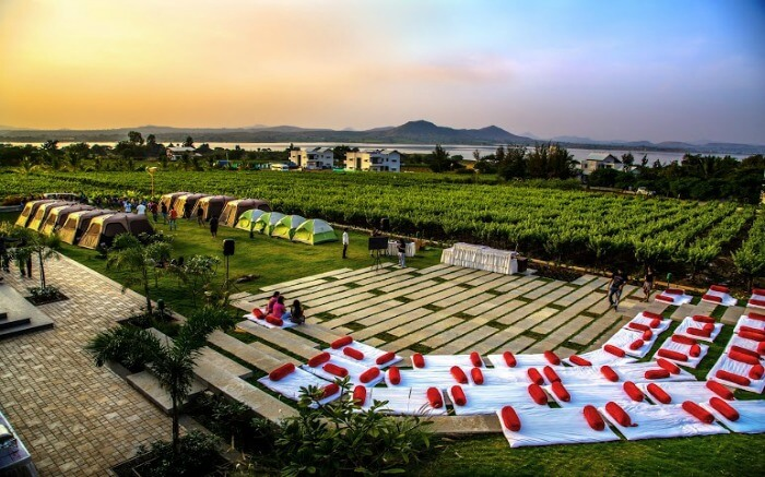 Soma vineyards in Nashik