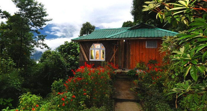 Wild Flower Retreat Sikkim