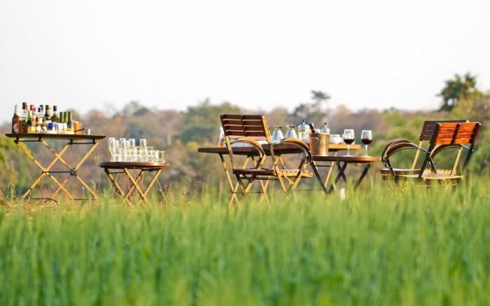 Wine on tables in a lawn of Pench National Park resort