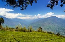 best time to visit Assam