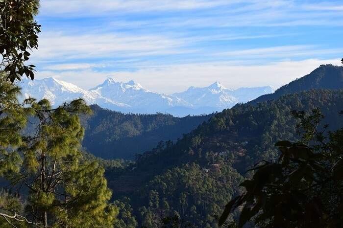 A distant view of the himalayan peaks from Nanda Devi to Nanda Kot as seen at Khali Estate in Binsar