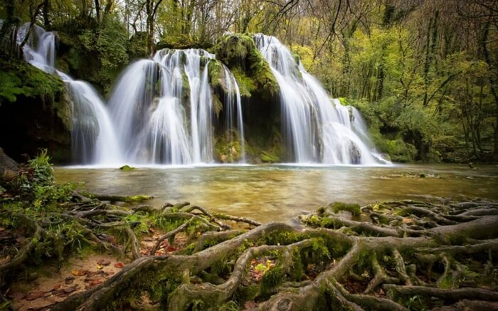 A beautiful waterfall in a dense forest