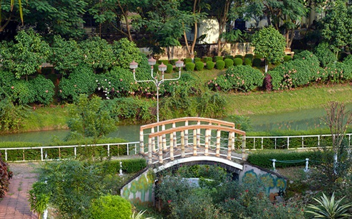 A lush green park with a small bridge