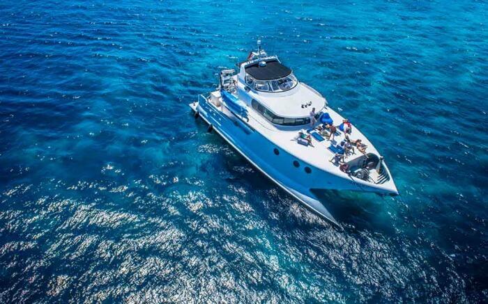 A luxurious catamaran cruise sailing on blue waters