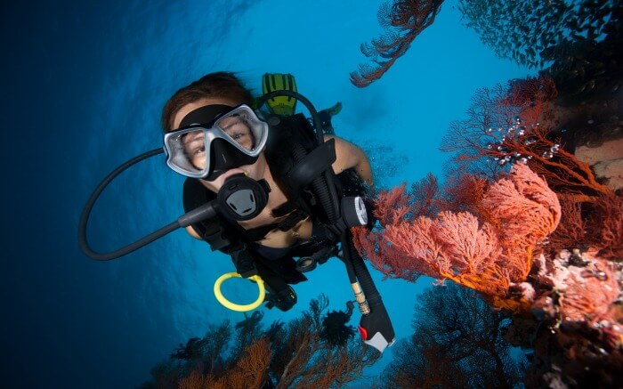 A scuba diver posing with soft corals