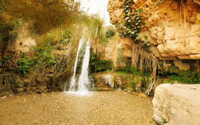 A water stream in Ein Gedi Nature Reserve in Israel