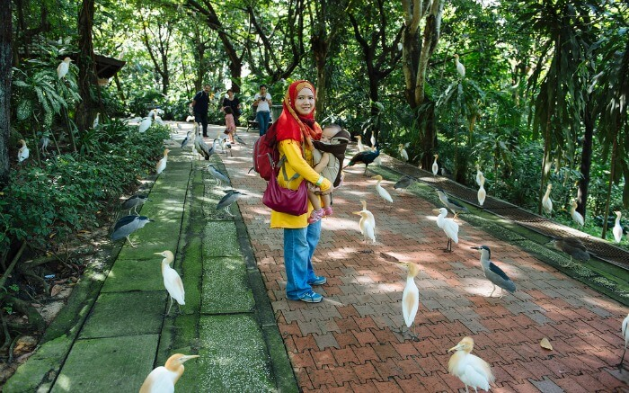 Bird Park in Kuala Lumpur